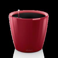 CLASSICO LS 21 Ярко-красный блестящий