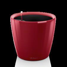CLASSICO LS 35 Ярко-красный блестящий
